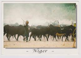 Niger - Berger Peulh Avec Son Troupeau - Photo Maurice Ascani Niamey - 2000 - Niger