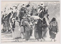 VISAGE DU NIGER - CARAVANE EN PAYS MANGA - Ed. ONT - Cliché J.M. Bertrand - Niger