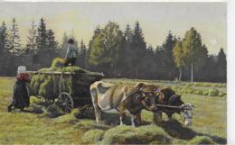 AK 0156  Bauern Bei Der Heueinfuhr Mit Ochsengespann Um 1910 - Bauern