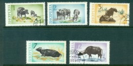 Albania 1965 Water Buffalo MLH/CTO Lot31049 - Albania