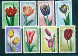 Albania 1971 Flowers, Tulips MUH Lot69727 - Albania