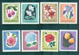 Albania 1965 Flowers MUH Lot69530 - Albania