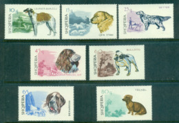 Albania 1966 Dogs MUH Lot69582 - Albania