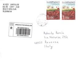 LETTERA X ITALY - Slovenia