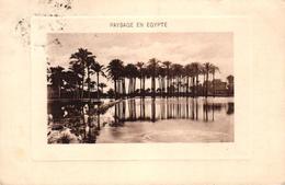 EGYPTE - PAYSAGE EN EGYPTE - Egypte