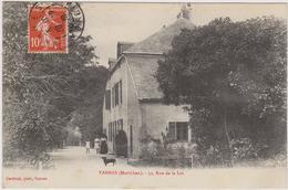 CARTE POSTALE°   VANNES 56  32 Rue De La Loi - Vannes