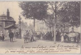 BETHUNE  Marché Aux Chevaux - Bethune