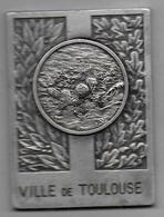 Médaille  - Ville De Toulouse - Journée De Sauvetage 1977 - Natation