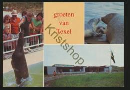 Texel - Natuurrecreatiecentrum [AA35 6.260 - Ohne Zuordnung
