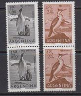 Argentina 1961 Penguins 2v Pair ** Mnh (41812) - Argentinië
