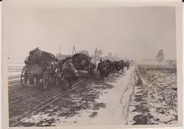 IN DER SUDUKRAINE  UKRAINE  FOTO DE PRESSE WW2 WWII WORLD WAR 2 WELTKRIEG Aleman Deutchland - Guerra, Militares