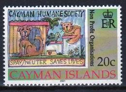 Cayman Islands 2001 Queen Elizabeth Single Commemorative Stamp Celebrating Non Profit Organisations. - Cayman Islands