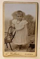 OLD CARDBOARD PHOTO  WOLLNER  POZEGA      10,5 X 6,5 - Photographs