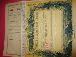 Certificat Nominatif D'actions De 250 Fr Entièrement Libérées/ Compagnie Des Chemins De Far De La PROVENCE/1951   ACT182 - Railway & Tramway