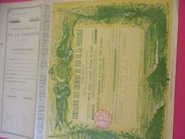 Certificat Nominatif D'actions De 250 Fr Entièrement Libérées/ Compagnie Des Chemins De Fer De La PROVENCE/1951   ACT183 - Railway & Tramway
