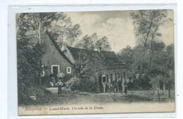 Ellezelles Louise Marie Coin De La Haute - Ellezelles