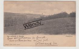Genk (les Collines 1905) - Genk