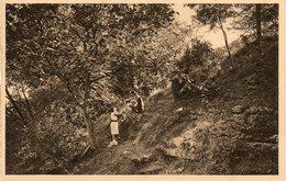 BOISSY L AILLERIE   L OISEAU BLEU   Maison De Vacances     La Colline - Boissy-l'Aillerie