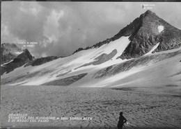 ADAMELLO - VEDRETTA DEL MANDRONE - LOBBIA ALTA - EDIZ. PANIGHETTI MILANO - NUOVA - Alpinisme