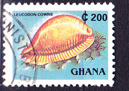 Ghana - Kaurischnecke (Leucodon Cowrie) (Mi.Nr.: F1614) 1991/8 - Gest. Used Obl. - Ghana (1957-...)