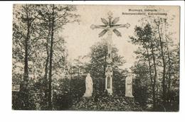 CPA - Carte Postale -Belgique -Scherpenheuvel - Kalvarieberg-1910  VM478 - Scherpenheuvel-Zichem