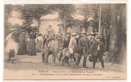 Arras -  Promenade Sur Le Petit Elephant Et Le Poney - Exposition Du Nord De La France  -  CPA° - Arras