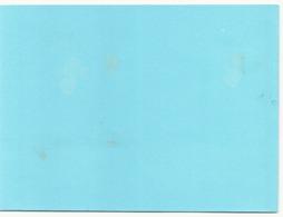 Buvard ( 21 X 16 Cm ) Taches - Blotters