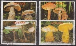 Flore - GUYANA - GUYANE - Champignons, Lépiote - N° 2077 à 2080 - 1989 - Guyane (1966-...)