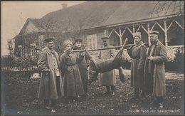 Der Wolf Von Sawischtsche, C.1915 - Verlag Für Allgemeines Wissen Foto-AK - Belarus