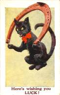 Here's Wishing You Luck ? Chat Animation Fer à Cheval Chance Salmon - Cats