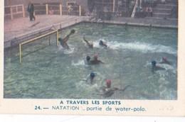 Vers 1950 LES SPORTS / NATATION / PARTIE DE WATER POLO ET DEPART D'un 100 METRES - Natation