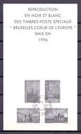 ZNP 29 Brussel,hart Van Europa  ZWART WIT VELLETJE 1997 - Foglietti Bianchi & Neri
