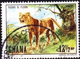 Ghana - Löwe (Panthera Leo) (Mi.Nr.: 414) 1970 - Gest Used Obl. - Ghana (1957-...)