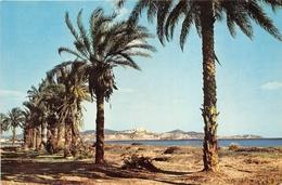 IBIZA    PLAYA D EN BOSSA - Ibiza