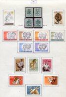 11223 BELGIQUE  Collection Vendue Par Page N°1172/87 */**  1961  TB - Belgique