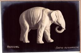 Russia. Happy ELEPHANT Figures Vintage PHOTO 1914 - Elephants