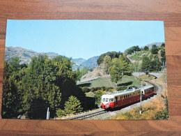 La Vie Du Rail - Un Autorail ADP Descend Du Lioran Sur Aurillac Format 23X14 Cm - Chemin De Fer
