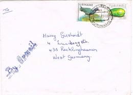 31566. Carta Aerea PARAMARIBO (Suriname) 1989. Papaya Stamp - Surinam