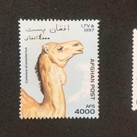 AGFHAN POST. 1997. CAMEL. MNH (C2506C) - Briefmarken