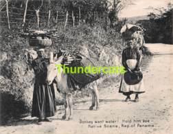 GRAND CARTE LARGE CARD DONKEY WANT WATER NATIVE SCENE REPUBLIC OF PANAMA MADURO  18 CM X 14 CM - Panama