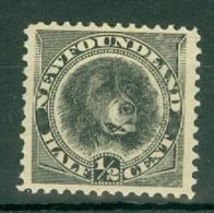 Newfoundland: 1894   Dog    SG59   ½c   Black    MH - Newfoundland