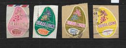 Sierra Leone, 1969 Cola Plant Colour Change Set Complete Used (7415) - Sierra Leone (1961-...)