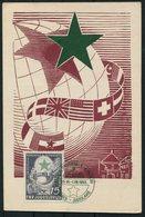 1953 Yugoslavia Esperanto Congress Maximum Card - Esperanto