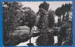 53 - COSSÉ-LE-VIVIEN -  LA PISCINE SUR L'OUDON, À MELLERAY - CPSM DENTELÉE - ED; CHRETIEN - Other Municipalities