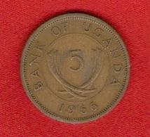 Ouganda 1966 - 5 Cents - KM 1 - Uganda - Uganda