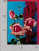 CARTOLINA VG ITALIA - FIORI - Rose Rosa - ROTALFOTO 197 - 10 X 15 - ANN. 1969 - Fiori