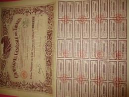 Action Ordinaire De 250 Francs  Au Porteur Entièrement Libérée /Compagnie Générale Des Tabacs /1927         ACT193 - Agricoltura