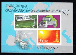 Nederland 1974 Groningen Aardgasleverancier Van Europa - Fantasie Vignetten