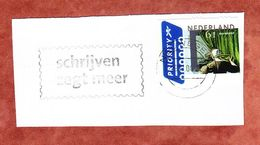 Briefstueck, EF Frau Am Fenster, MS Nieuwegein 2004 (69565) - Storia Postale