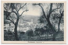 CARD PONTEDASSIO PANORAMA TRA ULIVETO     (IMPERIA) -FP-V-2    -0882-28683 - Imperia